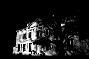 manors tree 712053 m A Step into the Paranormal with Milton's Ghost Hunter